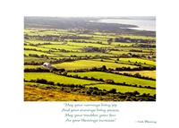 Image for May Your Mornings Bring Joy Birthday Card, 40 Fields of Green