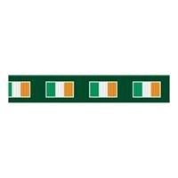 Image for Irish Flag Dog Leash