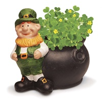 Image for Grow Your Own Shamrocks