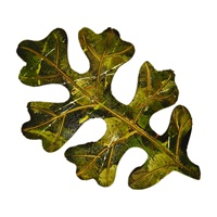 Image for Bill Baber Acrylic Oak Leaf Brooch