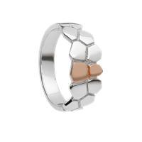 Image for CARIC Ring